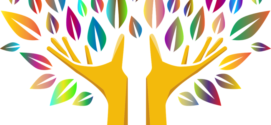 Kolorowe drzewo